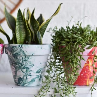 DIY Terra Cotta Pots: 15 Amazing Painted Projects